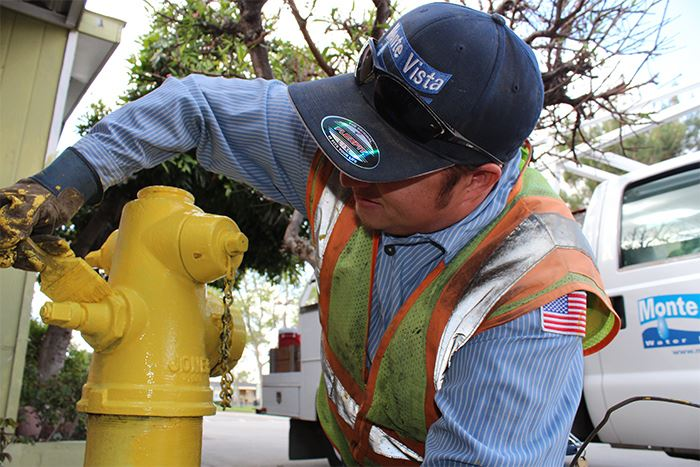 Man painting fire hydrant